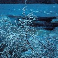 мороз -35 :: Валерия Ширковцова