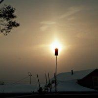 Рожденственское солнышко... :: ВладиМер