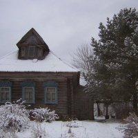 Зимний сон :: Ольга