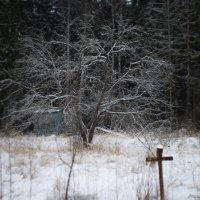 зима :: Евгений U