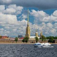 Вид на Петропавловскую крепость. :: Сергей Басов