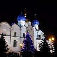 Новый год в Казанском Кремле :: Иля Григорьева