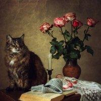 Кот ученый :: Ирина Приходько