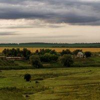 Летний вечер в деревне :: Luis-Ogonek *