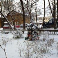 Рождественская погода :: Mary Коллар