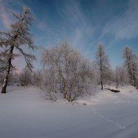 Зимушка-зима :: Олег Кулябин