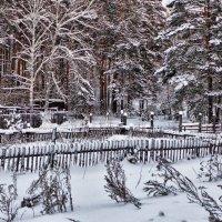 Зимой в деревне :: Стил Франс
