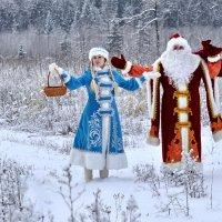 Дед Мороз и Снегурочка. :: Алексей Ковынев