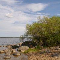 Озеро весной :: lady v.ekaterina