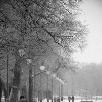 Зимний парк :: Ivan Zaytcev