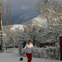 зима :: aleks