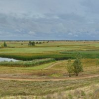 Панорама поймы реки :: Сергей Сёмин