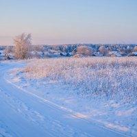 Зимняя пора :: Ирина Никифорова