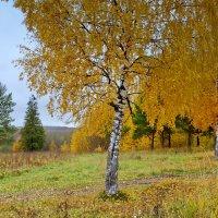 Осень в Роще памяти :: Валерий Талашов