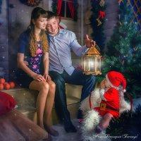 Новогодняя сказка :: Дмитрий Бачтуб