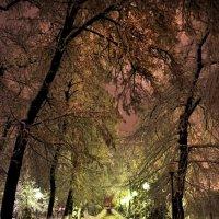 Зима :: Андрей Хомяков