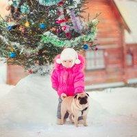 зимняя прогулка :: Ольга Челышева