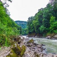 Река Белая Адыгея :: Олеся Енина