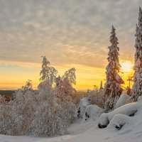 Зимнее солнце :: vladimir Bormotov