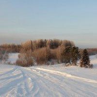 Зимняя дорога. :: Андрей Вычегодский