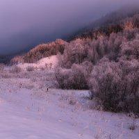 purple sunset :: Дамир Белоколенко