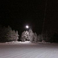 январь,вечер :: Елена