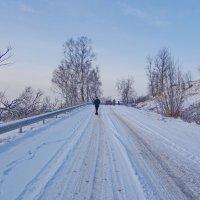 Снежная дорога. :: Ирина Нафаня