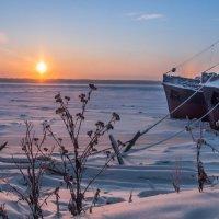 Корабли на зимовке :: Яна Старковская