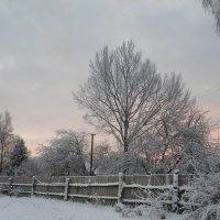 Морозное январское утро :: BoxerMak Mak