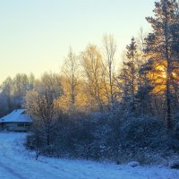 Снег... :: Анатолий Антонов
