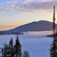 В долине туман :: Сергей Чиняев