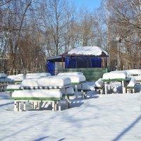 Зима пришла :: Лидия (naum.lidiya)