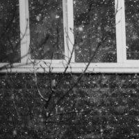 Шел снег... :: Валерия  Полещикова