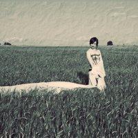 В поле :: Анастасия Задорожко