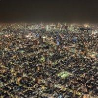 Токио :: Nataliya Barinova