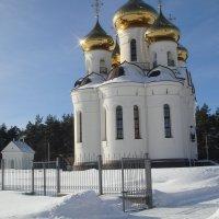 Церковь Александра Невского :: helga 2015