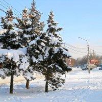 Зима :: Виктор Шандыбин