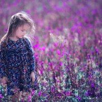 Фиолетовое настроение :: Наталья Дари