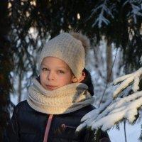 Зимой :: Владимир Буев
