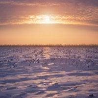 Зимняя пашня :: Антон Сологубов