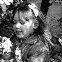 Весна :: Светлана Булава