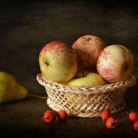 Так много яблок и одна груша :: Галина Galyazlatotsvet