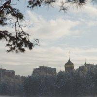 Туман. :: Андрей Боталов