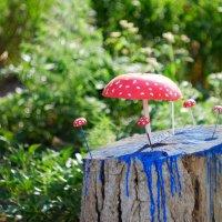 Волшебный гриб :: Роман Атемов