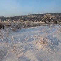 Нарядила зима всех вокруг: и траву, и кусты, и деревья... :: Александр Попов