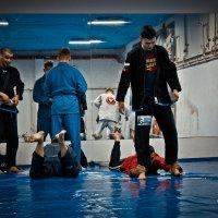Team Sonic тренировочный лагерь 2016 :: Ника Коренюгина