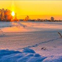 Морозный рассвет... :: Александр Никитинский