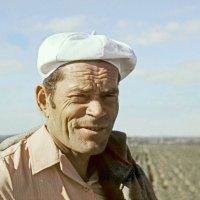 Среди родных полей :: Валерий Талашов