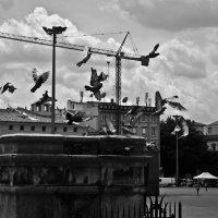 Болонья :: Мила Бутакова