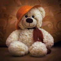Малая медведица :: Сергей Соболев